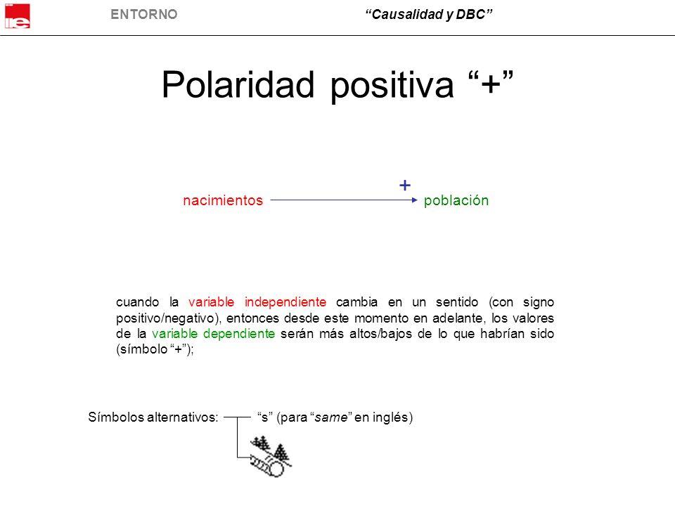 Polaridad positiva +