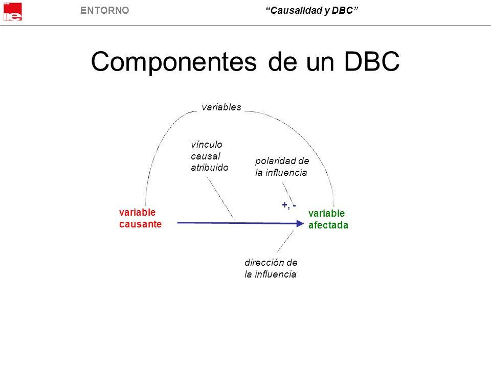 Componentes de un DBC variables vínculo causal atribuido polaridad de