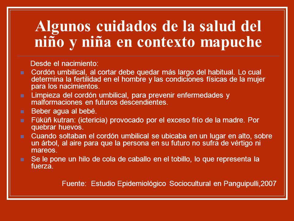Algunos cuidados de la salud del niño y niña en contexto mapuche