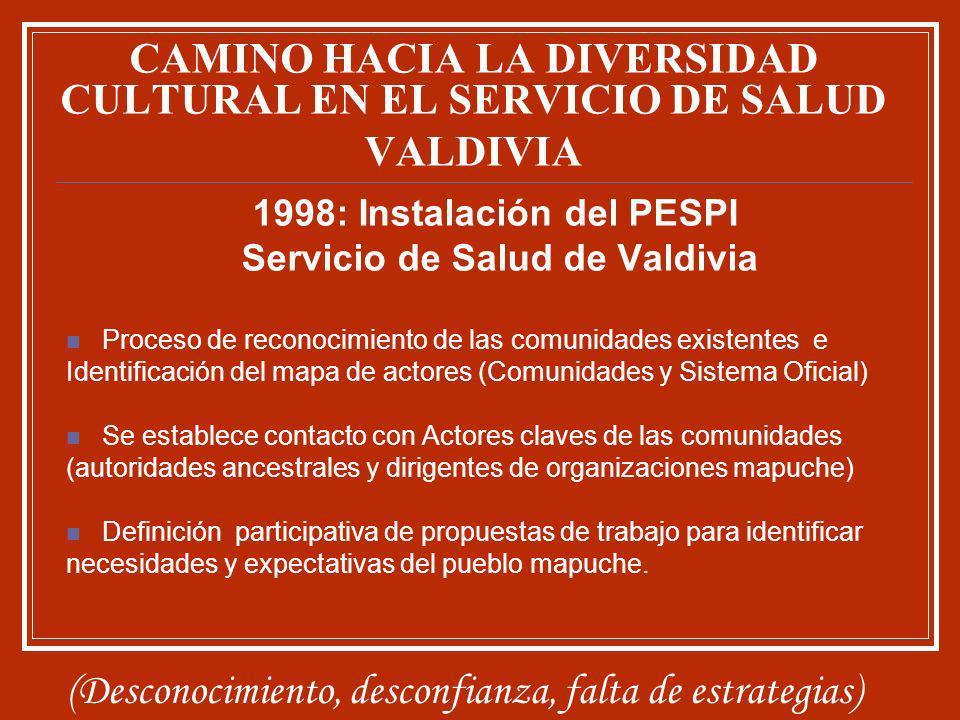 CAMINO HACIA LA DIVERSIDAD CULTURAL EN EL SERVICIO DE SALUD VALDIVIA