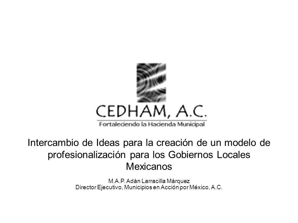 Intercambio de Ideas para la creación de un modelo de profesionalización para los Gobiernos Locales Mexicanos