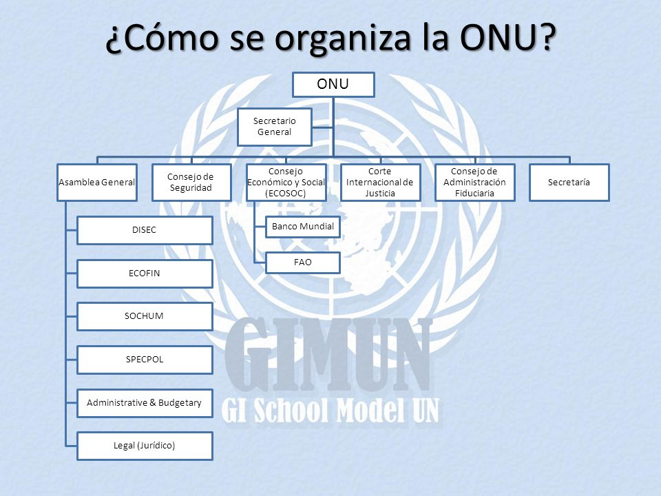 ¿Cómo se organiza la ONU