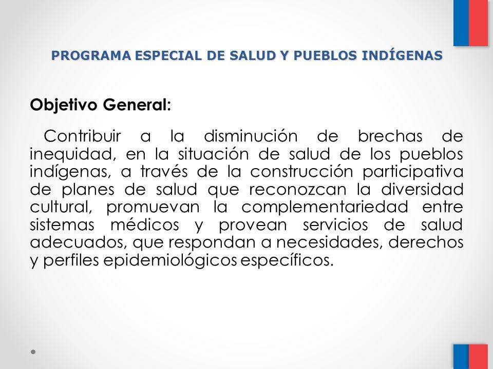 PROGRAMA ESPECIAL DE SALUD Y PUEBLOS INDÍGENAS