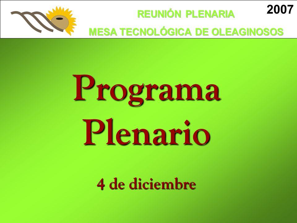 2007 Programa Plenario 4 de diciembre