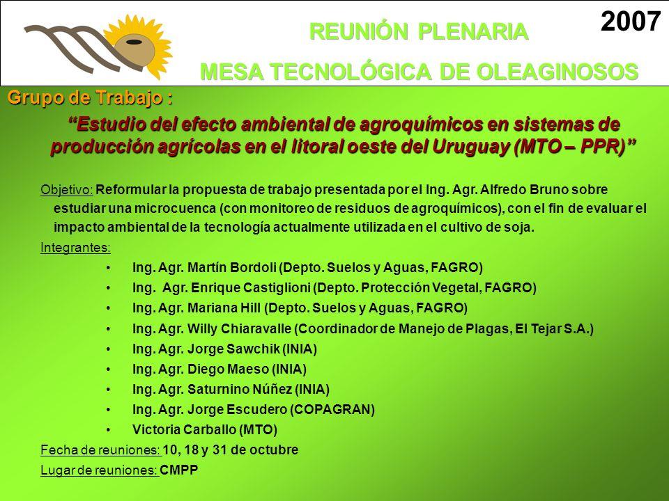 2007 Grupo de Trabajo : Estudio del efecto ambiental de agroquímicos en sistemas de.