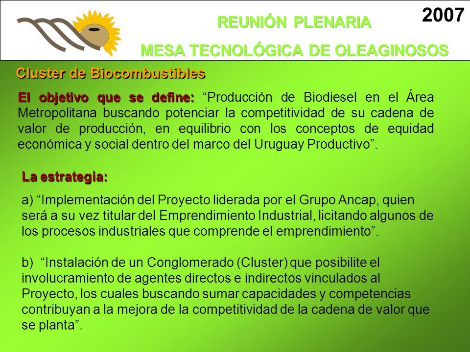 2007 Cluster de Biocombustibles