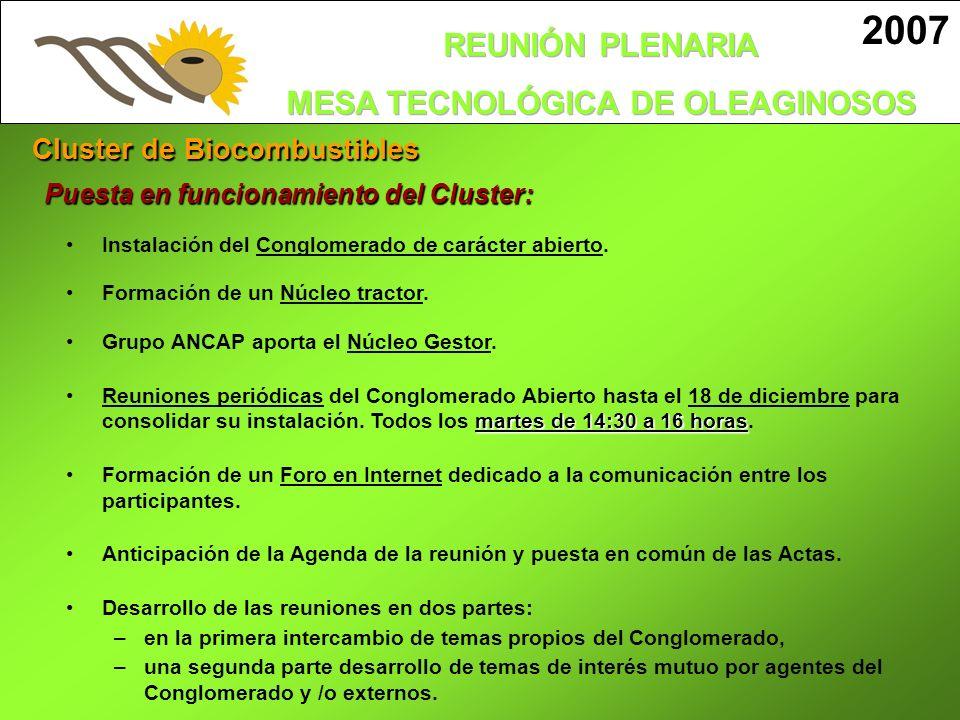 2007 Cluster de Biocombustibles Puesta en funcionamiento del Cluster: