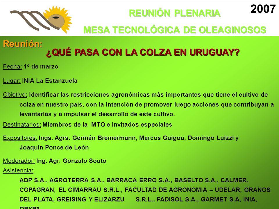 ¿QUÉ PASA CON LA COLZA EN URUGUAY