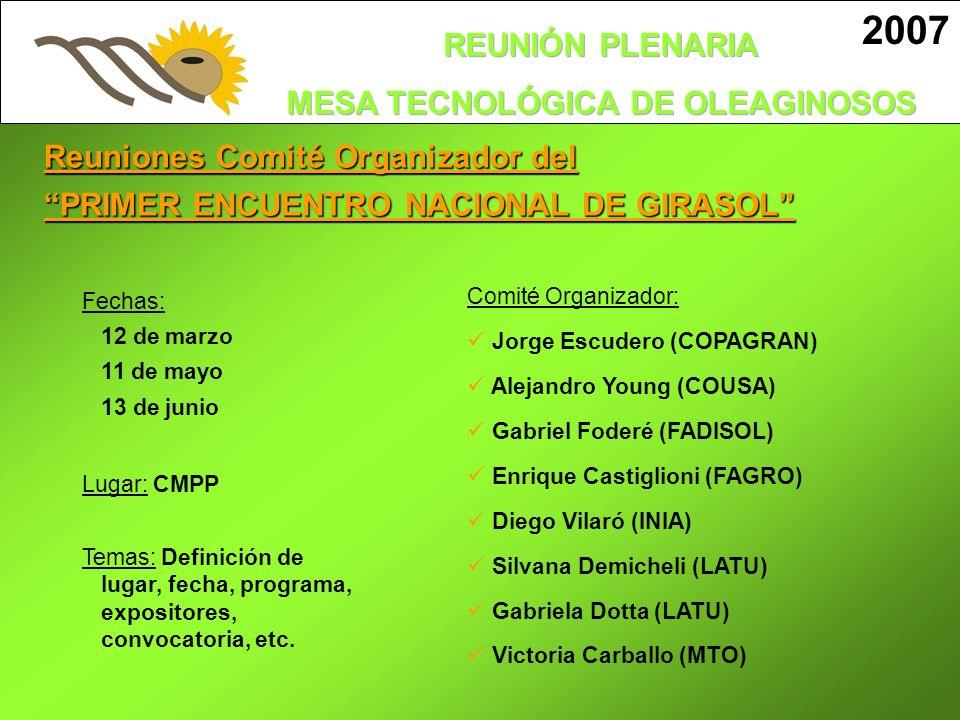 2007 Reuniones Comité Organizador del