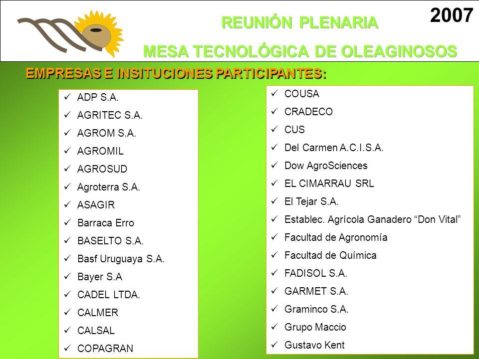 2007 EMPRESAS E INSITUCIONES PARTICIPANTES: COUSA ADP S.A. CRADECO