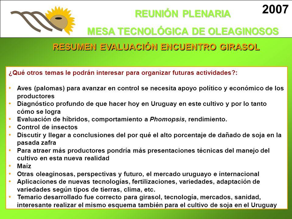 RESUMEN EVALUACIÓN ENCUENTRO GIRASOL