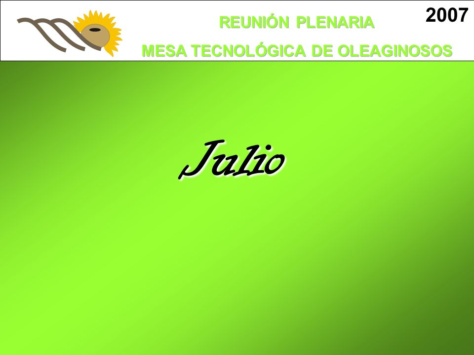 2007 Julio