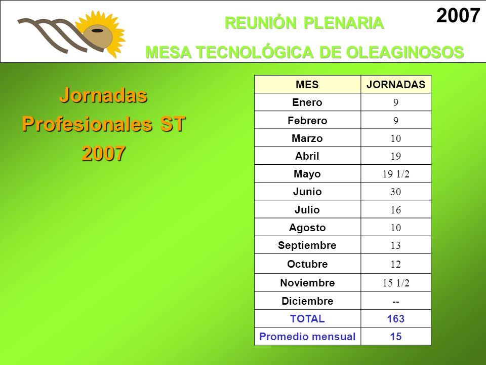 Jornadas Profesionales ST 2007