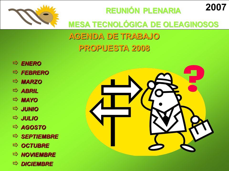 2007 AGENDA DE TRABAJO PROPUESTA 2008 ENERO FEBRERO MARZO ABRIL MAYO