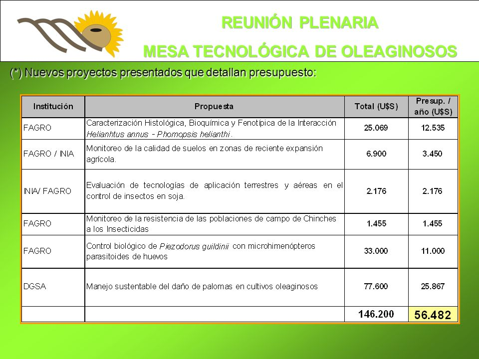 (*) Nuevos proyectos presentados que detallan presupuesto: