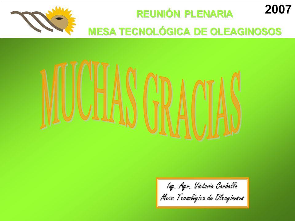 MUCHAS GRACIAS 2007 Ing. Agr. Victoria Carballo