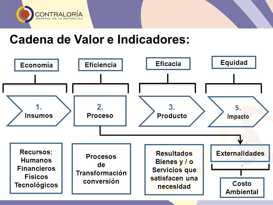 Cadena de Valor e Indicadores: