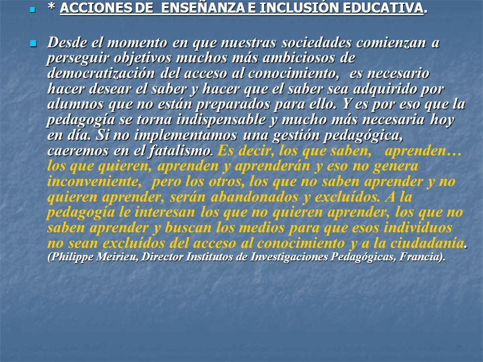 * ACCIONES DE ENSEÑANZA E INCLUSIÓN EDUCATIVA.