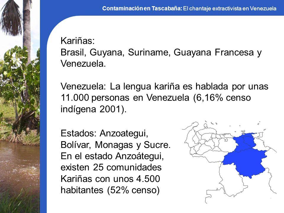 Brasil, Guyana, Suriname, Guayana Francesa y Venezuela.