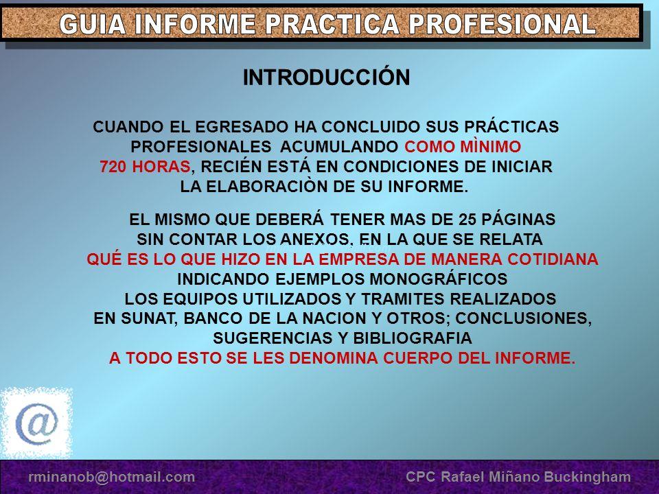 GUIA INFORME PRACTICA PROFESIONAL