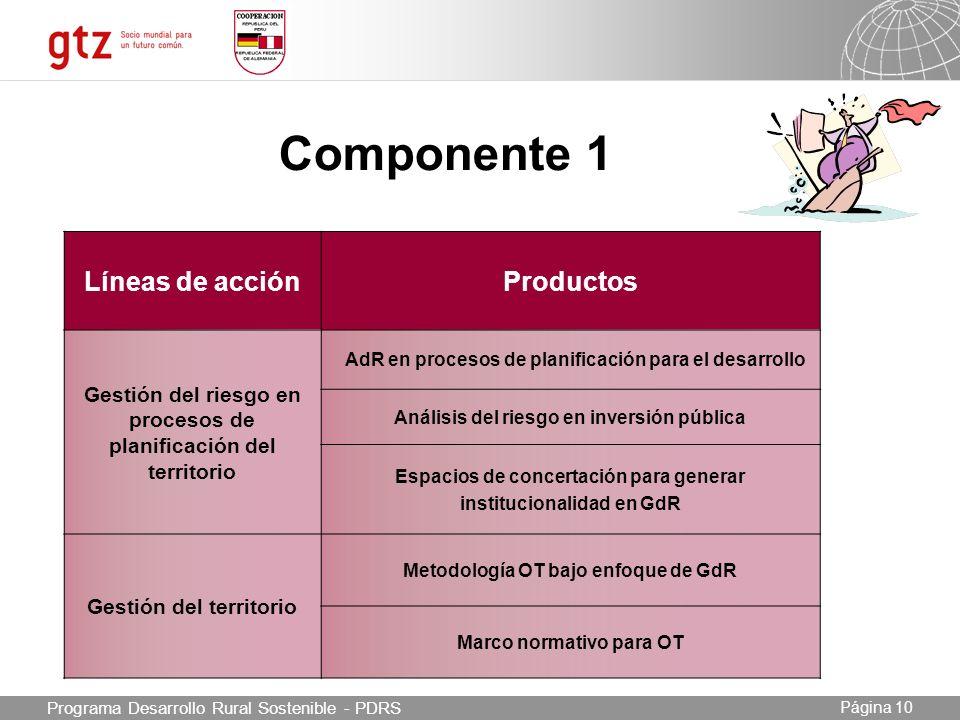 Componente 1 Líneas de acción Productos