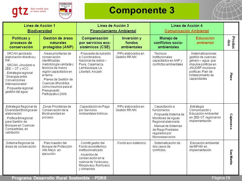 Componente 3 Programa Desarrollo Rural Sostenible - PDRS 19