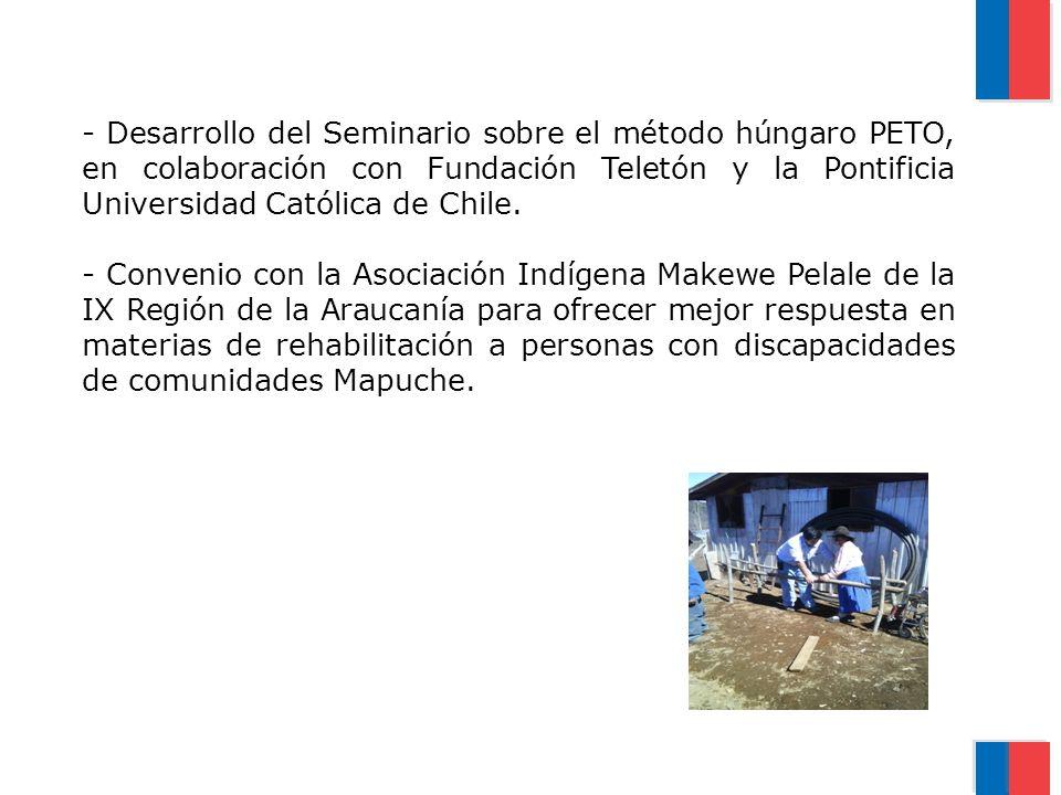 Desarrollo del Seminario sobre el método húngaro PETO, en colaboración con Fundación Teletón y la Pontificia Universidad Católica de Chile.