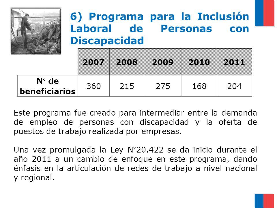 6) Programa para la Inclusión Laboral de Personas con Discapacidad