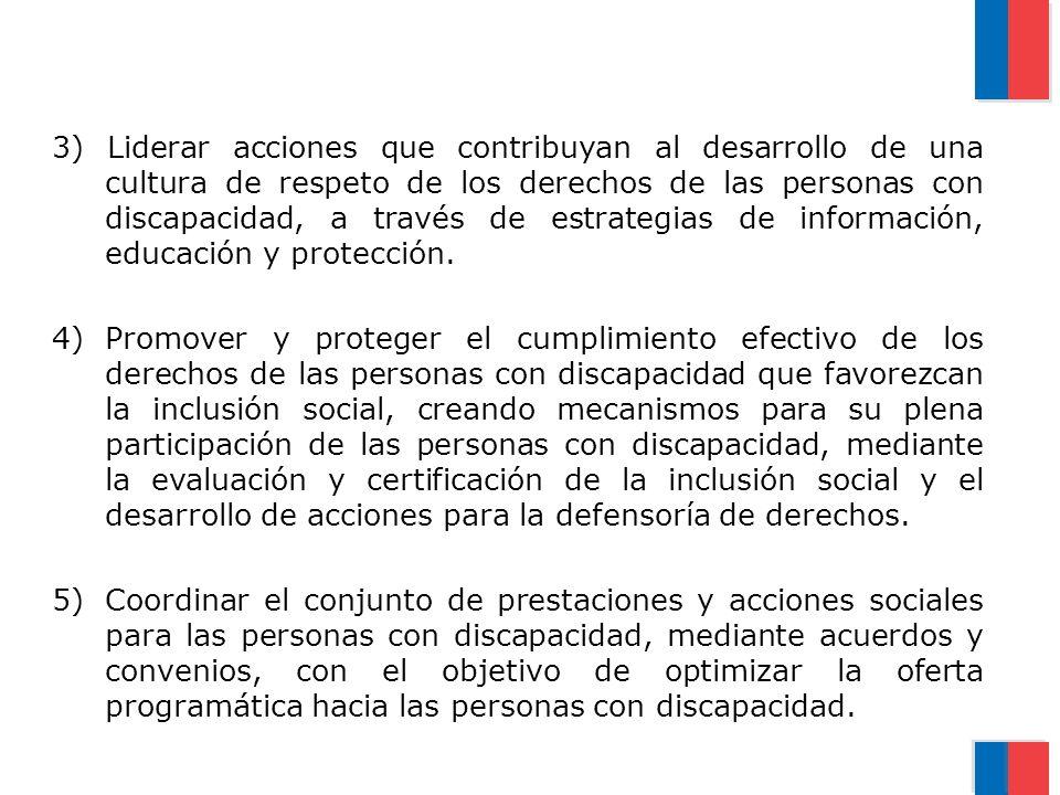3) Liderar acciones que contribuyan al desarrollo de una cultura de respeto de los derechos de las personas con discapacidad, a través de estrategias de información, educación y protección.