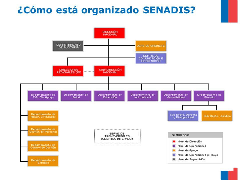 ¿Cómo está organizado SENADIS