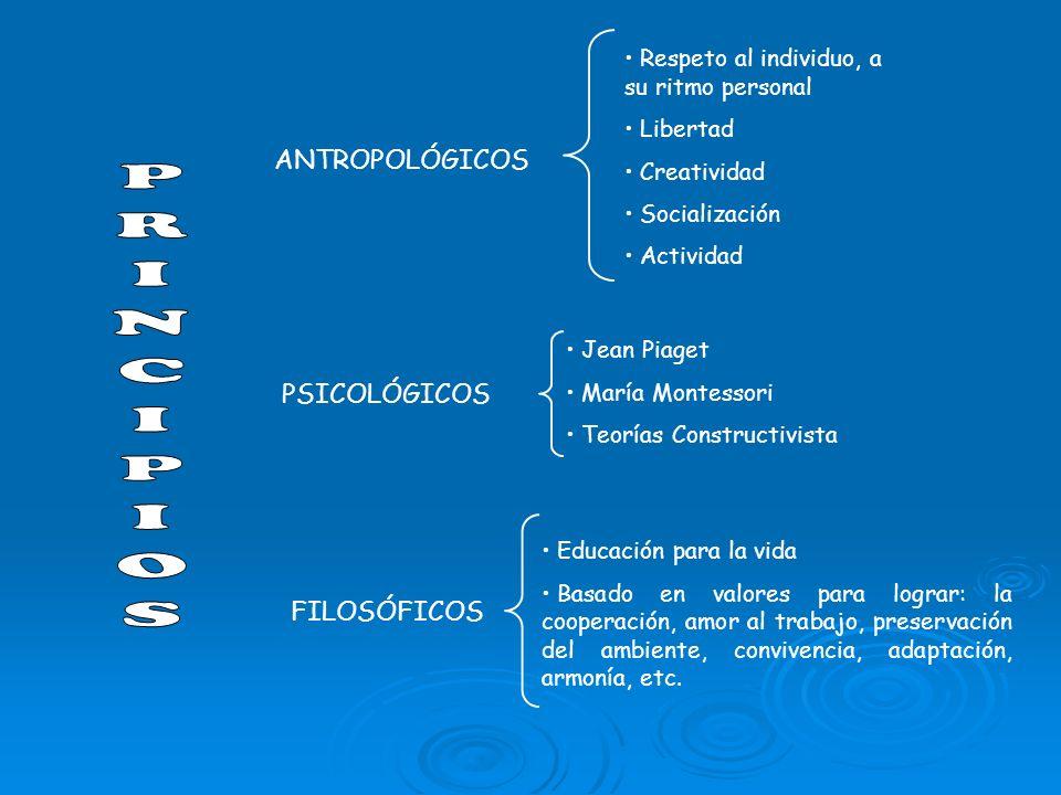 PRINCIPIOS ANTROPOLÓGICOS PSICOLÓGICOS FILOSÓFICOS