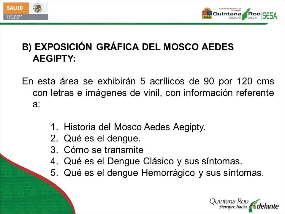 B) EXPOSICIÓN GRÁFICA DEL MOSCO AEDES AEGIPTY: