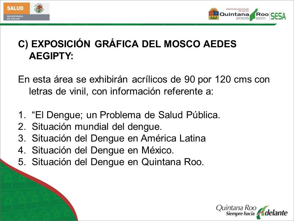C) EXPOSICIÓN GRÁFICA DEL MOSCO AEDES AEGIPTY: