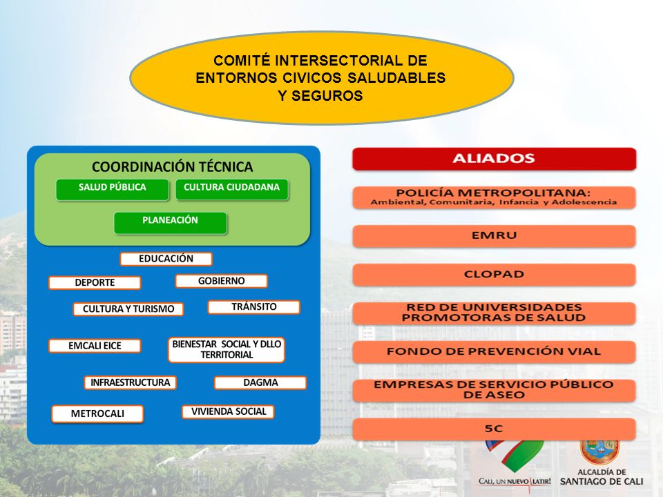 COMITÉ INTERSECTORIAL DE ENTORNOS CIVICOS SALUDABLES Y SEGUROS