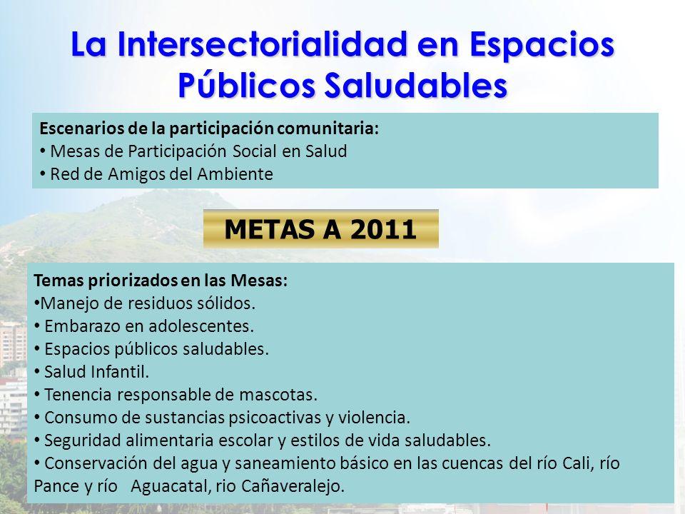 La Intersectorialidad en Espacios Públicos Saludables
