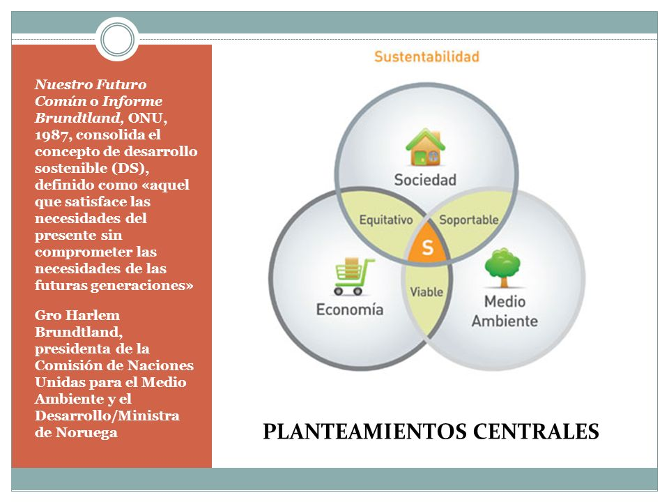 PLANTEAMIENTOS CENTRALES