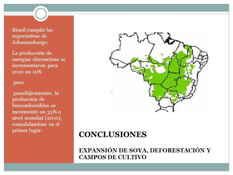 CONCLUSIONES EXPANSIÓN DE SOYA, DEFORESTACIÓN Y CAMPOS DE CULTIVO
