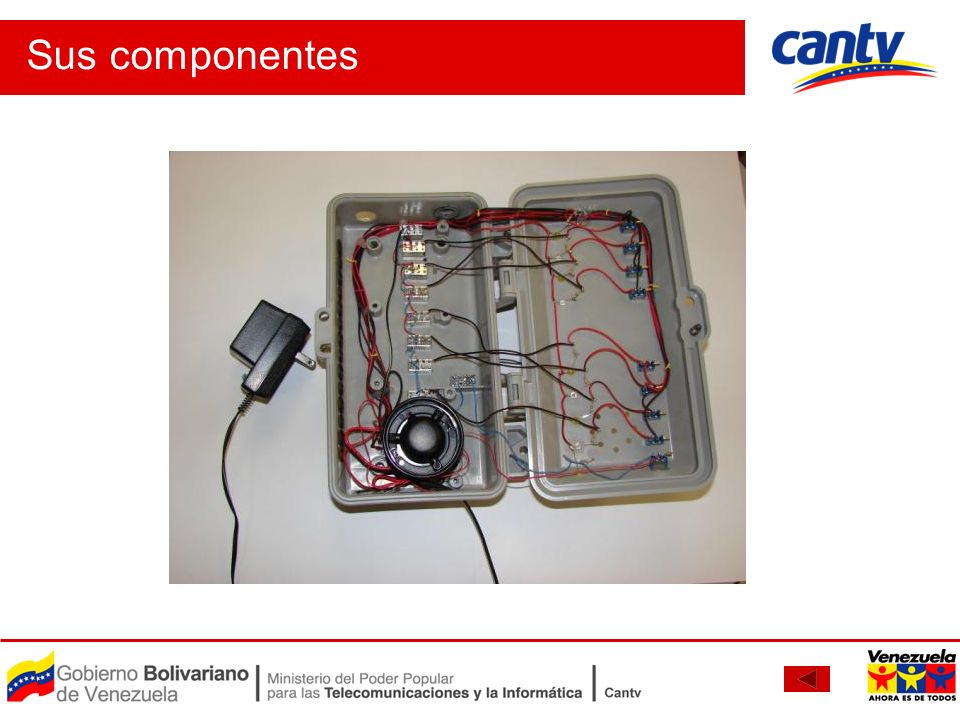 Sus componentes