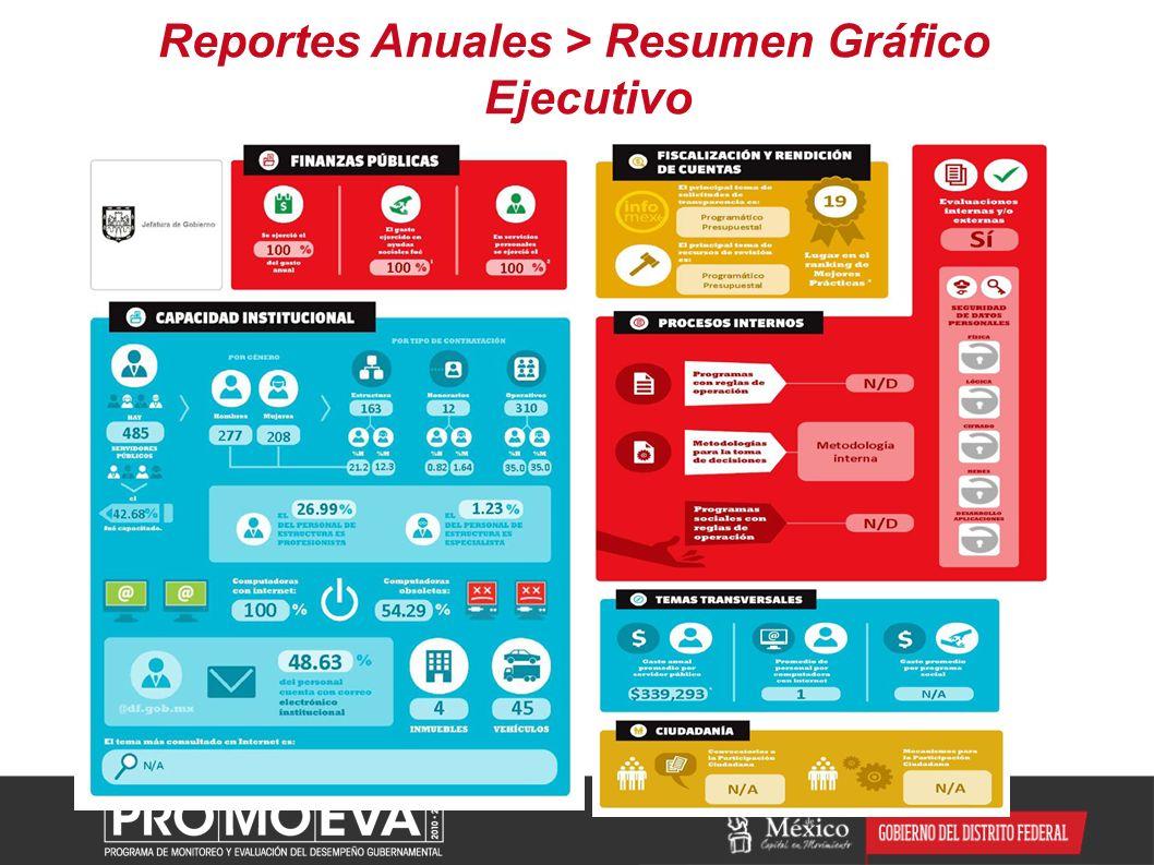 Reportes Anuales > Resumen Gráfico Ejecutivo