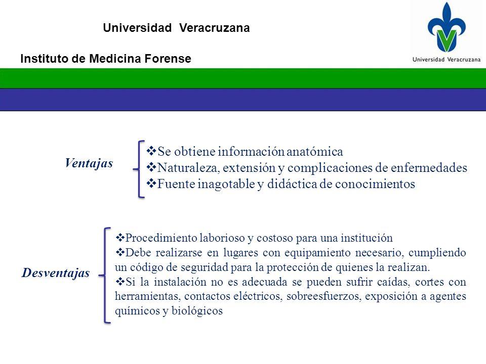 Se obtiene información anatómica