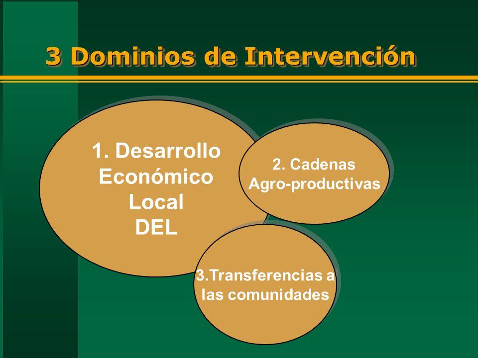 3 Dominios de Intervención