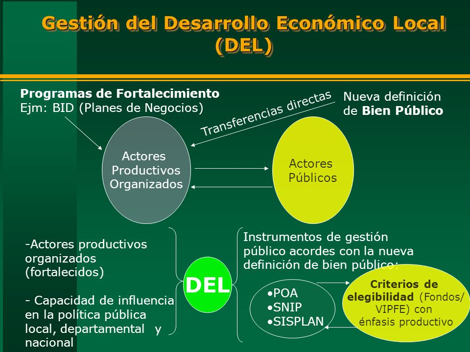 Gestión del Desarrollo Económico Local (DEL)