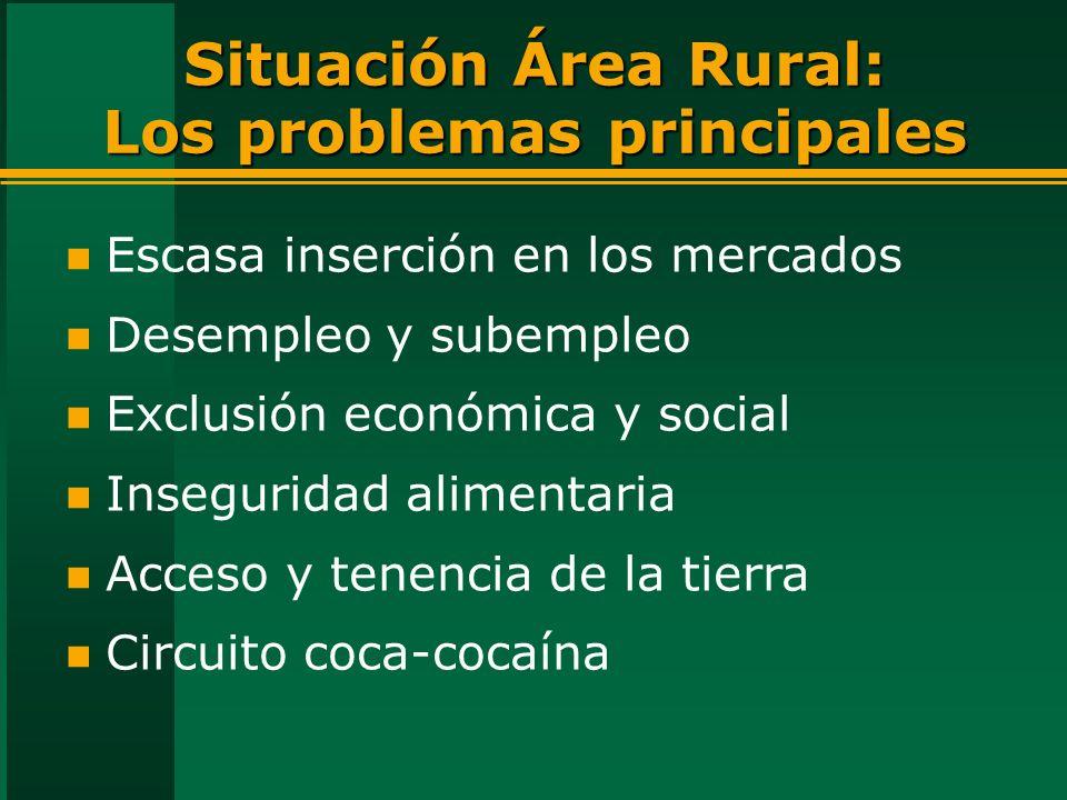Situación Área Rural: Los problemas principales