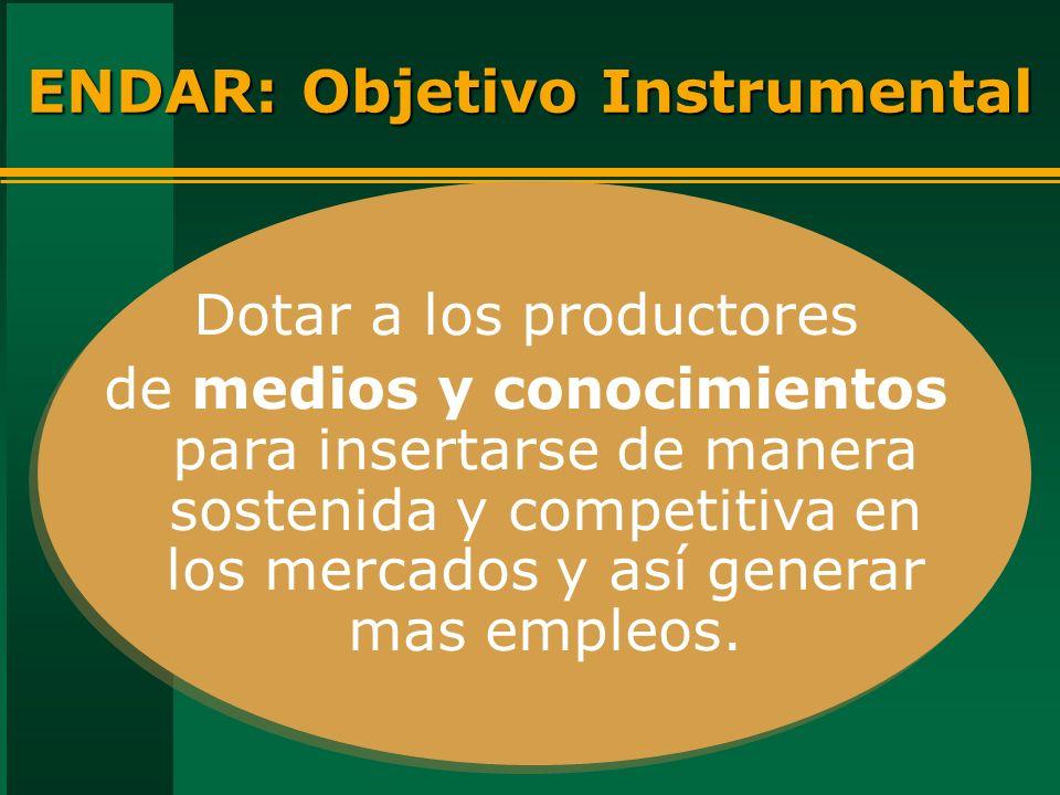 ENDAR: Objetivo Instrumental