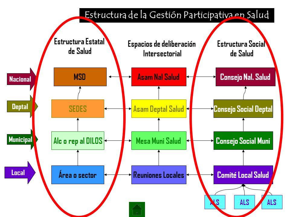 Estructura de la Gestión Participativa en Salud