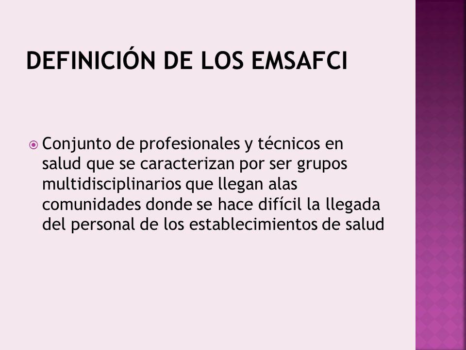 DEFINICIÓN DE LOS EMSAFCI