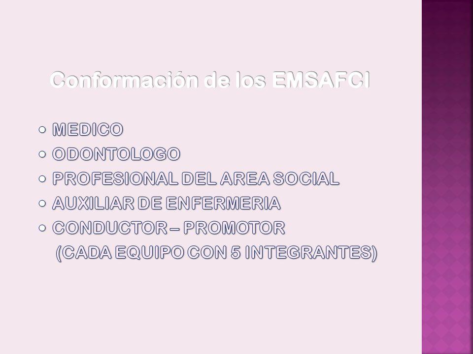Conformación de los EMSAFCI