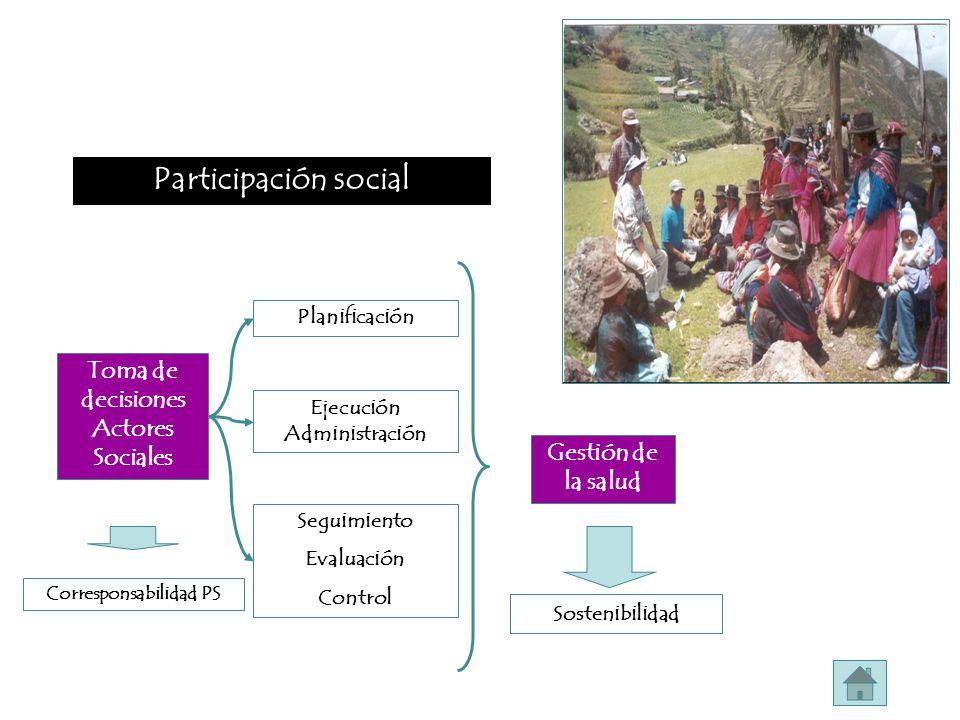 Participación social Toma de decisiones Actores Sociales