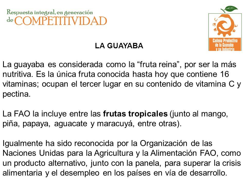 LA GUAYABA La guayaba es considerada como la fruta reina , por ser la más nutritiva.