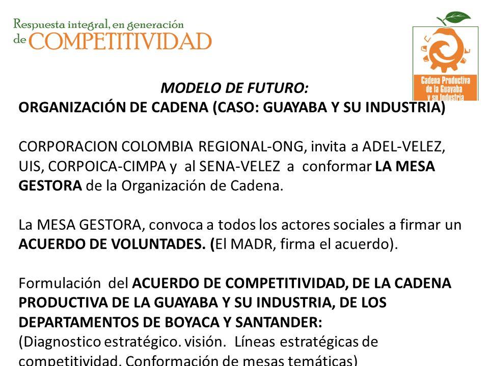 MODELO DE FUTURO: ORGANIZACIÓN DE CADENA (CASO: GUAYABA Y SU INDUSTRIA) CORPORACION COLOMBIA REGIONAL-ONG, invita a ADEL-VELEZ, UIS, CORPOICA-CIMPA y al SENA-VELEZ a conformar LA MESA GESTORA de la Organización de Cadena.